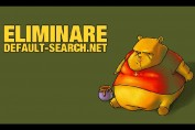 default-search-net