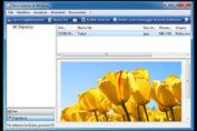 scanner_windows